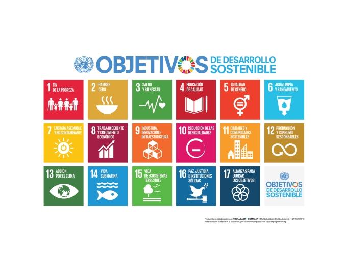 Sostenibilidad y las Naciones Unidas